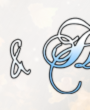 cropped-Banner-2019_4-1.png